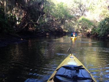 Practicing Kayaking in FLA!