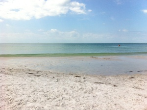 Fort DeSoto Park - Pinellas County Florida