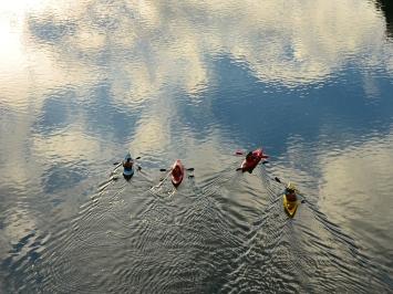 Kayak tour - Milo McIver