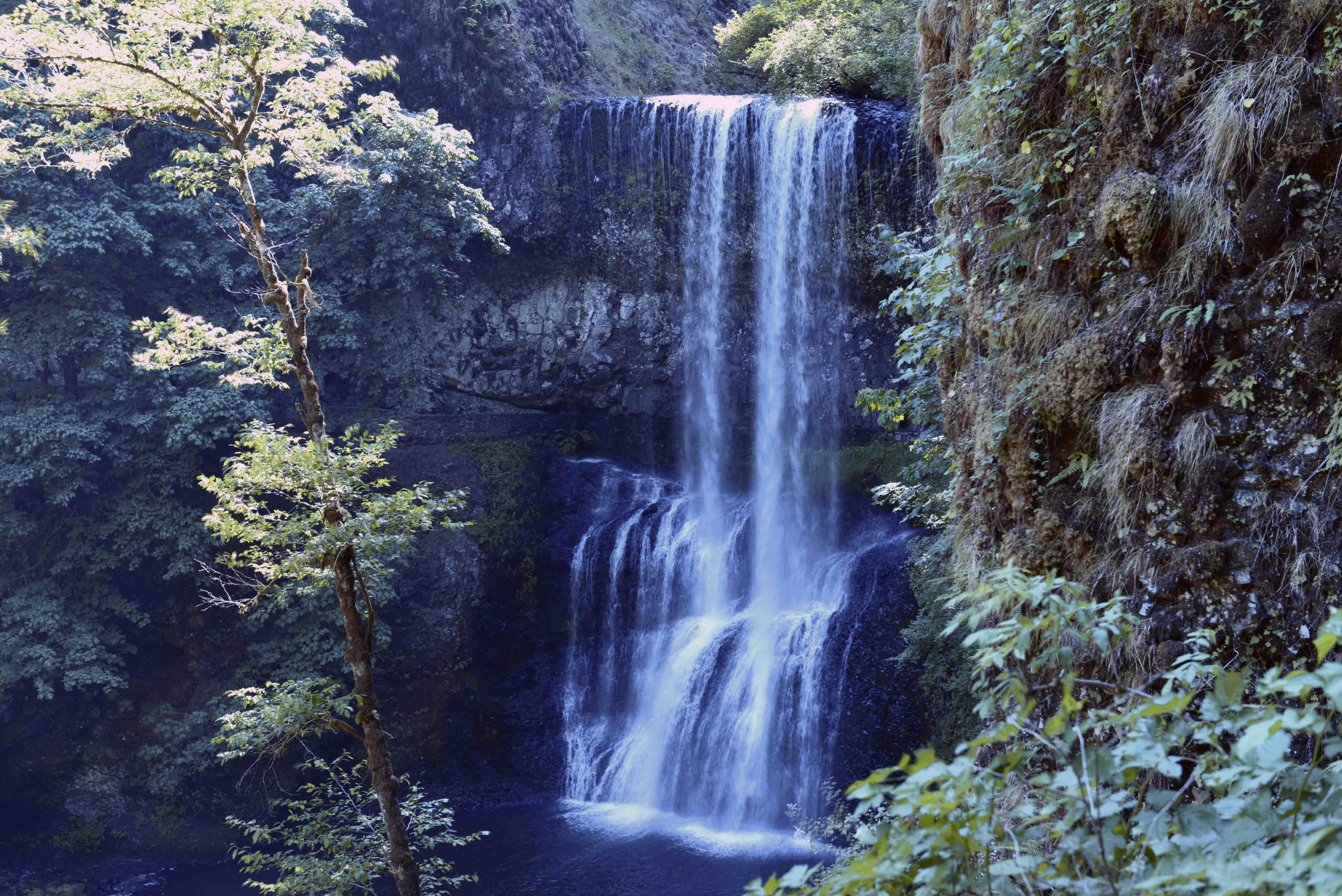Silver Falls State Park Gets The Gold Winecoasters Blog
